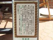 g_sakuhin-35