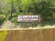 田野フィールド
